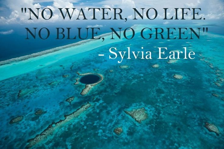 No water, no life, no blue, no green
